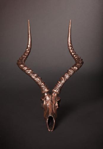 Bronze-Impala-Skull