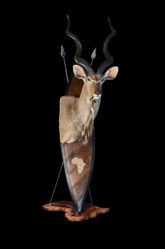 Kudu-Zulu-Floor